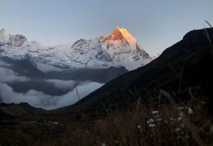 7 Best Things to do as a Traveler in Nepal in October and November