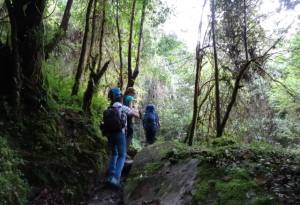 Australians, Do Not Miss This Opportunity: Go to Nepal for Holidays, Tours, Trekking and Jungle Safari