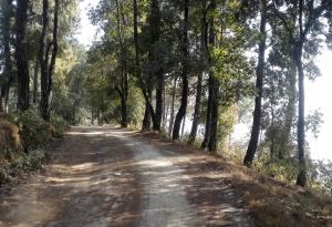 Best  Family Hike Around Kathmandu: Book Nagarkot Day Hike Avoiding Motor Road