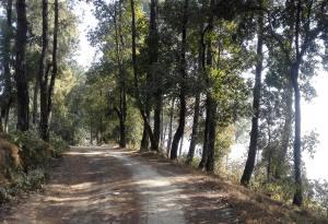 Budget/Cheap Hiking in Nepal Avoiding Motor Road