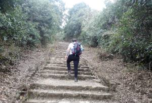 Chandragiri Day Hike Booking: A Perfect Hike Through the Amazon in Kathmandu with Nepal Kameleon Holidays