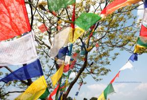 Colorful-Buddhist-Prayer-Flags