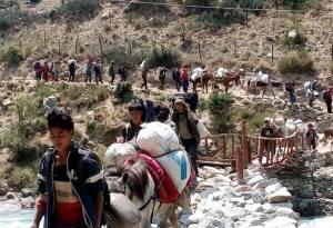 Yarsa-Hunting in Nepal