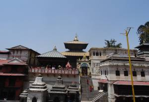 Pashupatinath Tour in Kathmandu: the Iconic and One of the Most Visited Hindu Pilgrimage Destinations in the World, Worship Lord Shiva and be Nurtured Spiritually
