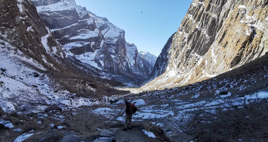 On the way to Annapurna Base Camp (WhatsApp: +977 9851159455)