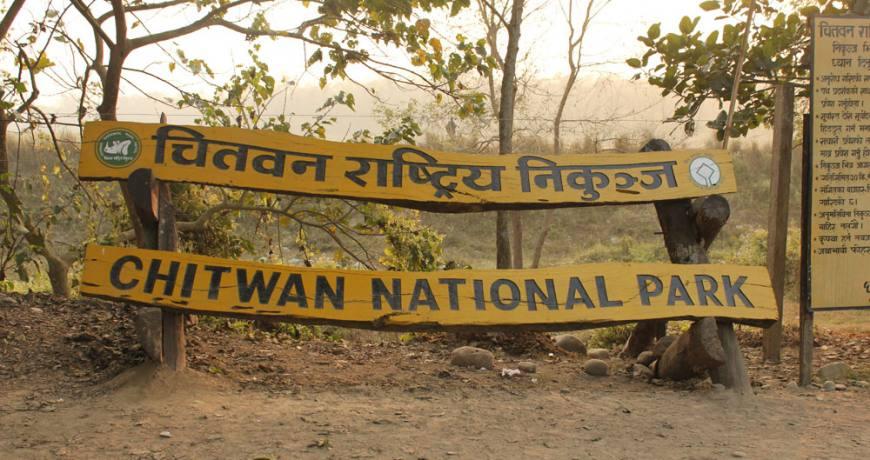 Chitwan Jungle Safari with Tharu village Tour