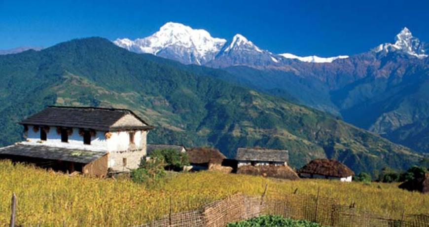 Dhampus village in lower Annapurna