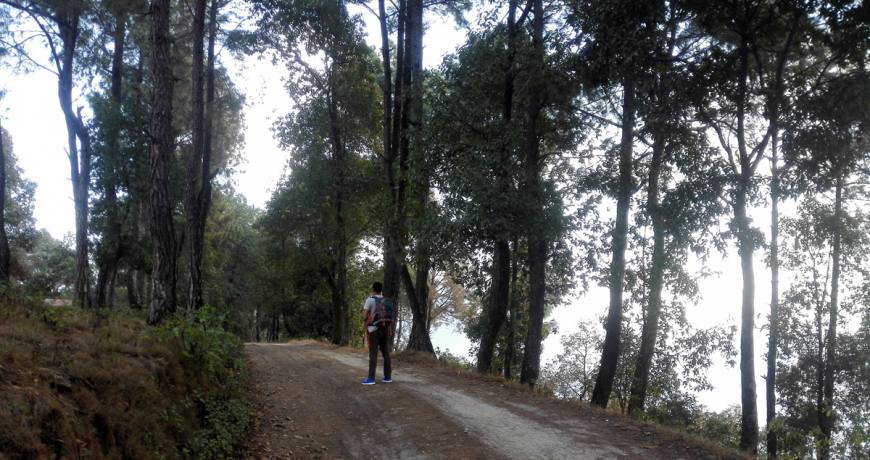Nagarkot Wheelchair Hiking Trail