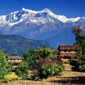 Royal (short) Trek in Annapurna